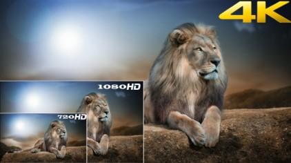 4k-vs-full-hd-vs-hd-ready-650x365