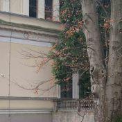 Zemaljski muzej u Sarajevu telefoto objektiv