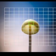 sp_camera_e_m1_mark_iii_050_accordion_6_various_points_01_jpg